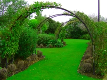 Garden Feature Arches Amp Plant Supports